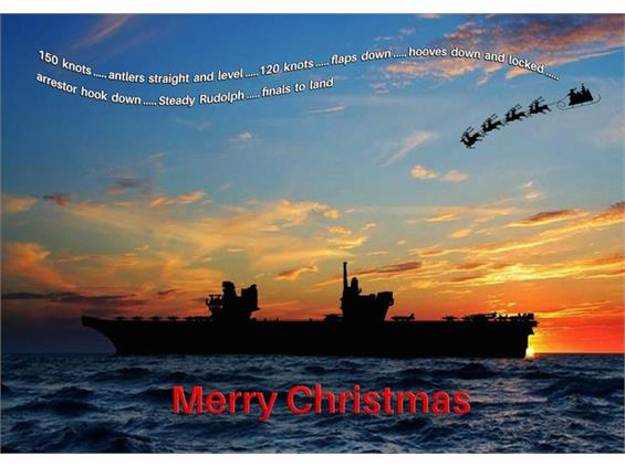 Navy Wings Christmas cards