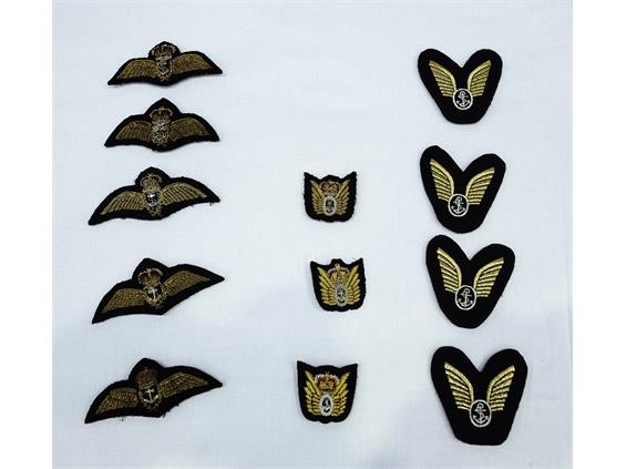 Naval Aviators receive their flying 'Wings'