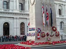 The Cenotaph after the march past