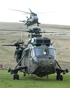 Sea Kings in Okehampton