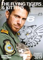 Royal Navy pilots and kittens charity calendar