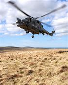 Lynx from 815 NAS