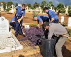 Helping to clear war graves